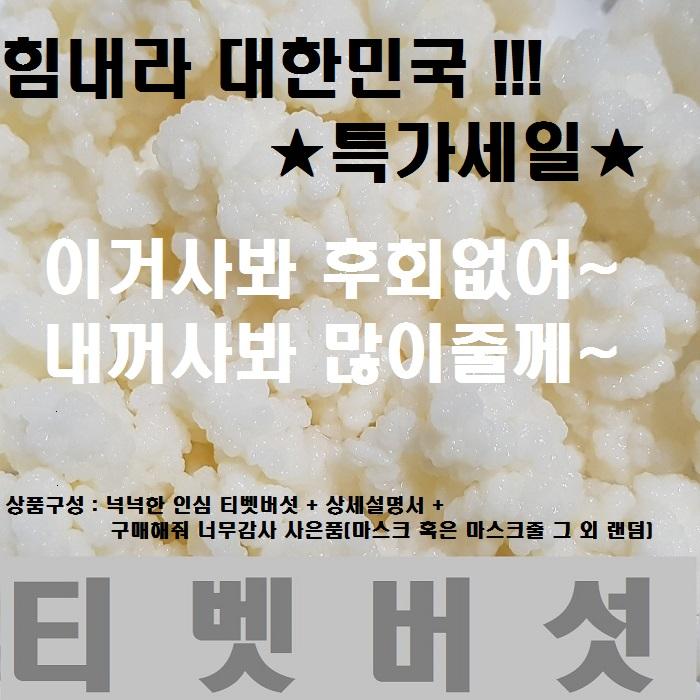 티벳버섯 케피어그레인, 30cc+사은품