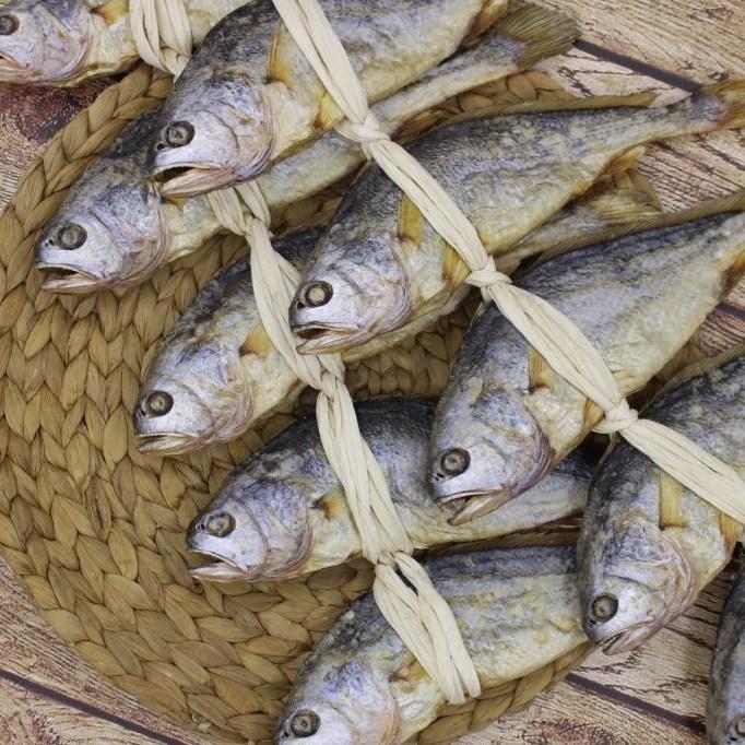 영광 법성포 보리굴비 25~32cm이상 10마리 굴비사유 영광굴비 직판매장 *생선비늘제거기 증정*, 1세트, 31cm이내