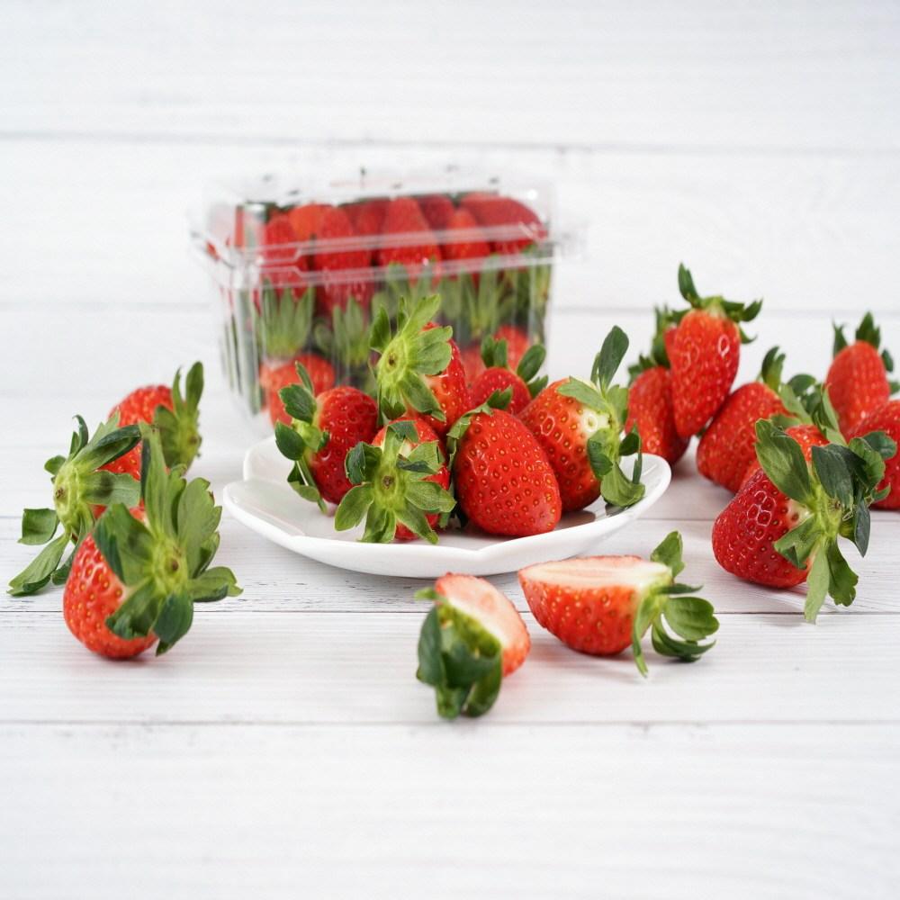 금실딸기 백화점 프리미엄 딸기 고당도 설향 딸기 하우스 겨울과일 선물용 500g 1kg 2kg, 설향 500g 1팩