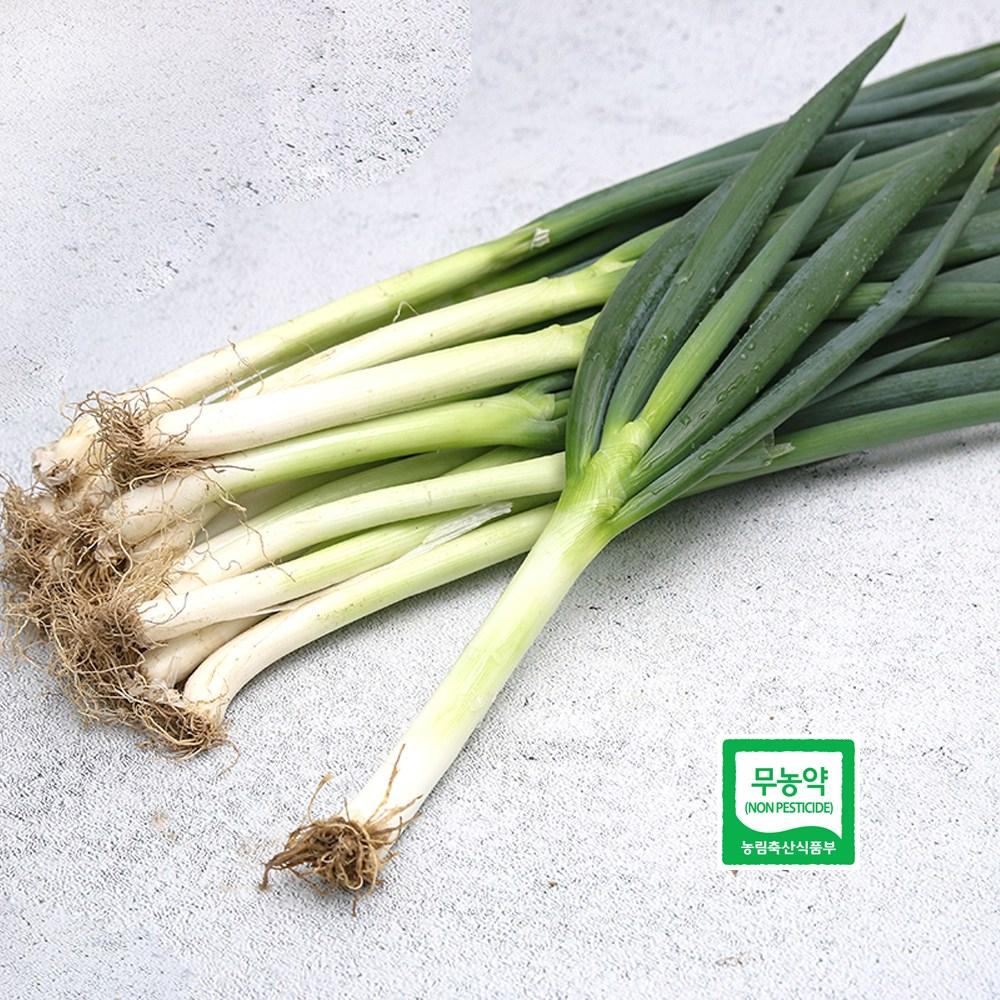 자연과농부들 국내산 무농약 대파 500g 1kg, 1봉, 01_국내산 대파 500g
