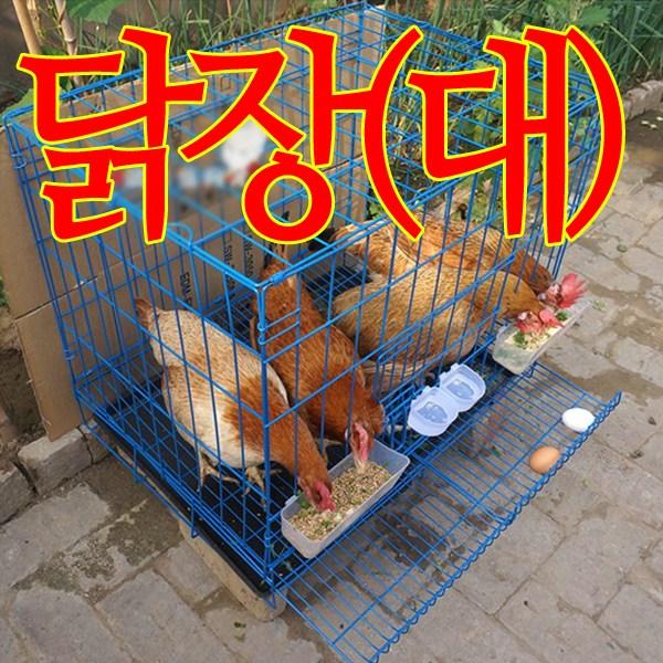 닭사육장(대형)/닭장/5마리까지사육/케이지/양계장, 단일상품