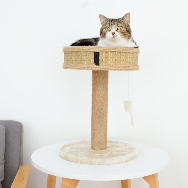 미래물 고양이 장난감 캣타워 일체형 기둥 타기 소형ZZW, 1개, 34*44CM