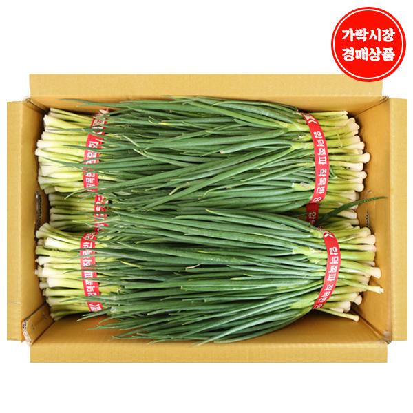 [가락시장 경매 식자재 채소] 깐쪽파 10단/10kg, 10단