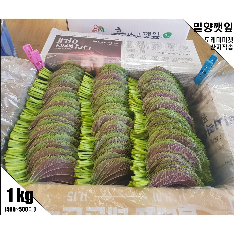 도레미마켓 밀양깻잎 찹찹이 500g 1kg 산지직송 전문농장 당일수확