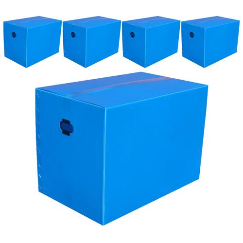 네오비 이사박스 5개묶음, 3호(500×350×350), 청색