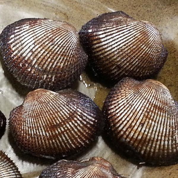 오병이어농산 피꼬막, 피꼬막2kg(특대)