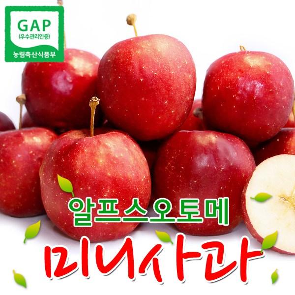 알프스오토메 영천 미니과(세척), 30-40g(25~33개), 1box