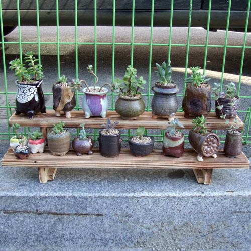 [헤윰]자연의초대 원목2단다육받침대 화분진열대 화분받침대