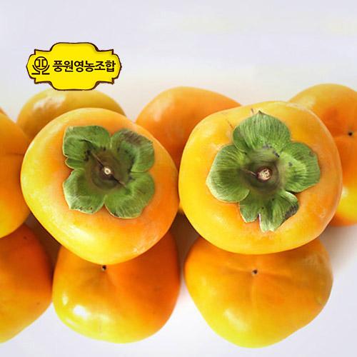 풍원영농조합법인 달콤한 경남 햇 단감 가정용흠과, 경남단감 흠과 사이즈 랜덤 5kg, 1박스