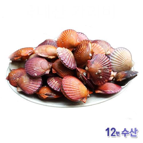 통영12번수산 통영 가리비, 0개, 2kg