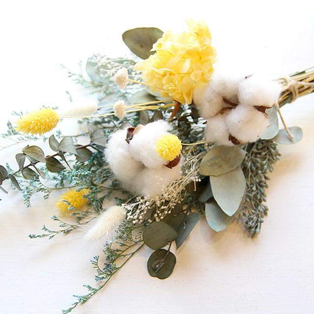 더봄 목화와 옐로수국 꽃다발 (프리저브드)