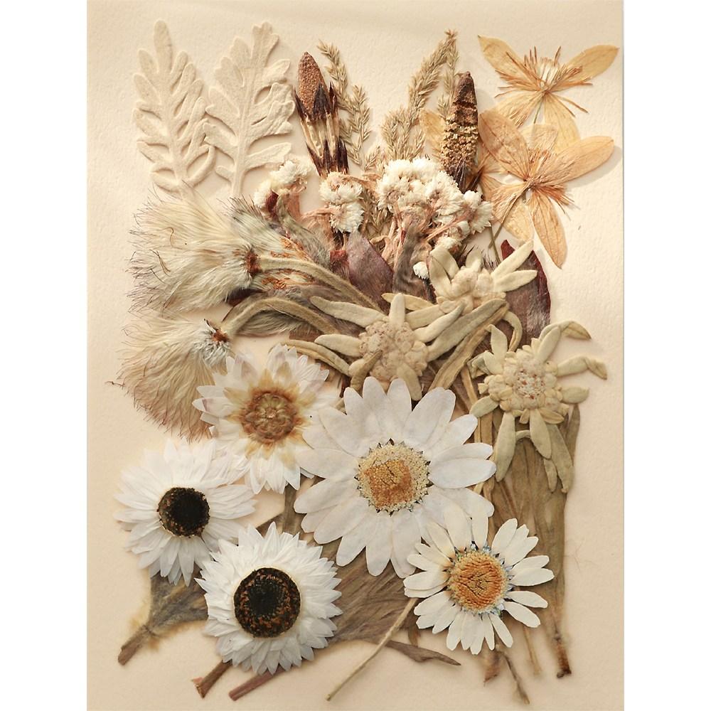 편지쓰는날 압화꽃모음, 압화-1408 로단세화이트