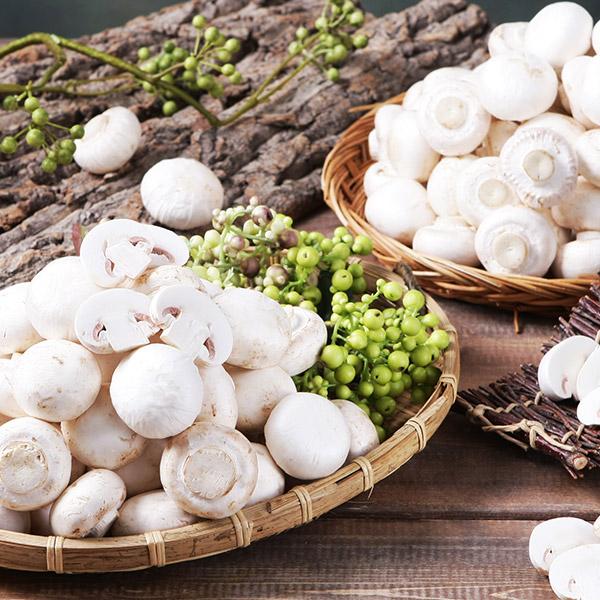 보령명품 양송이버섯, 500