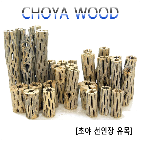 고피쉬수족관 초야유목9cm 새우유목, 1개
