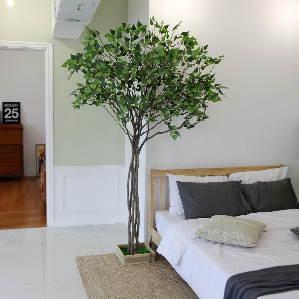 조아트 자작나무 인조나무 벚꽃나무 실내조경, 내츄럴 자작나무 220cm