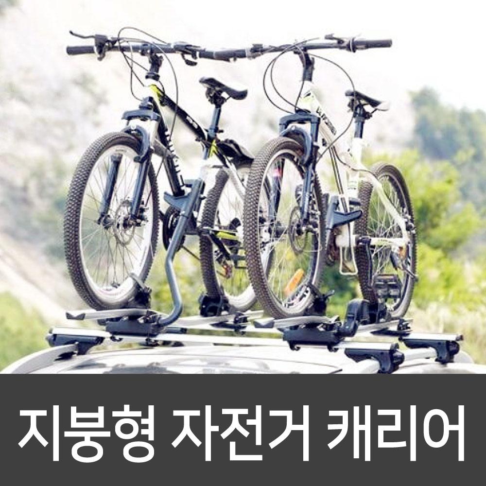 자전거 지붕형 캐리어