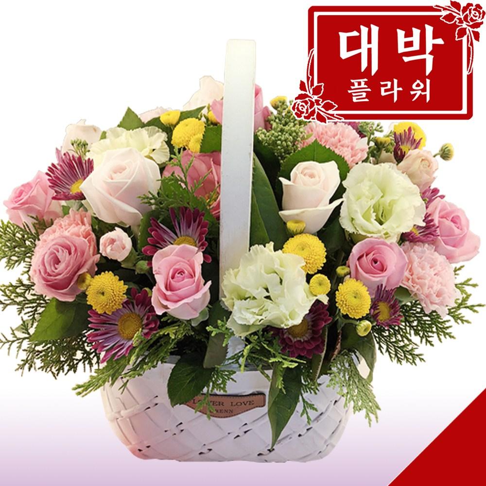 대박플라워 아기자기 꽃바구니 생일선물 기념일 출산꽃선물 병문안 꽃배달