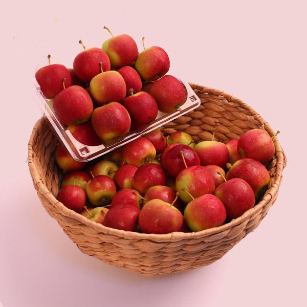 달콤 미니사과, 1개, 특품-미니사과(세척) 2kg