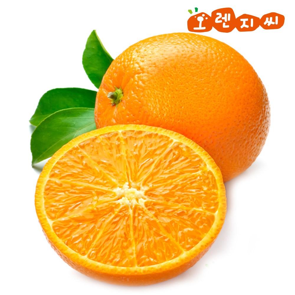 오렌지씨 네이블 오렌지 중과 대과 10개 20개 30개, 10개입, 230g내외