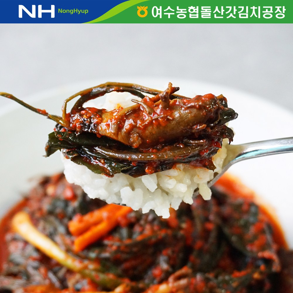 더싱싱 (HACCP 전통식품인증) 여수농협 국내산 고들빼기2kg, 2kg, 1개