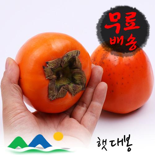 신선농장 대봉감 10kg, 1박스, 10kg (중과)