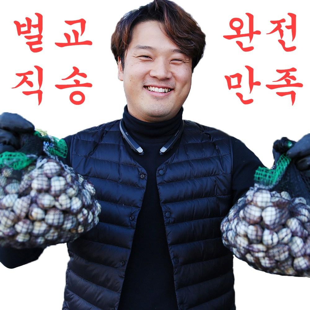 삿갓유통 깨끗하고 싱싱한 벌교총각 벌교꼬막, 1박스, 벌교 새꼬막 1kg