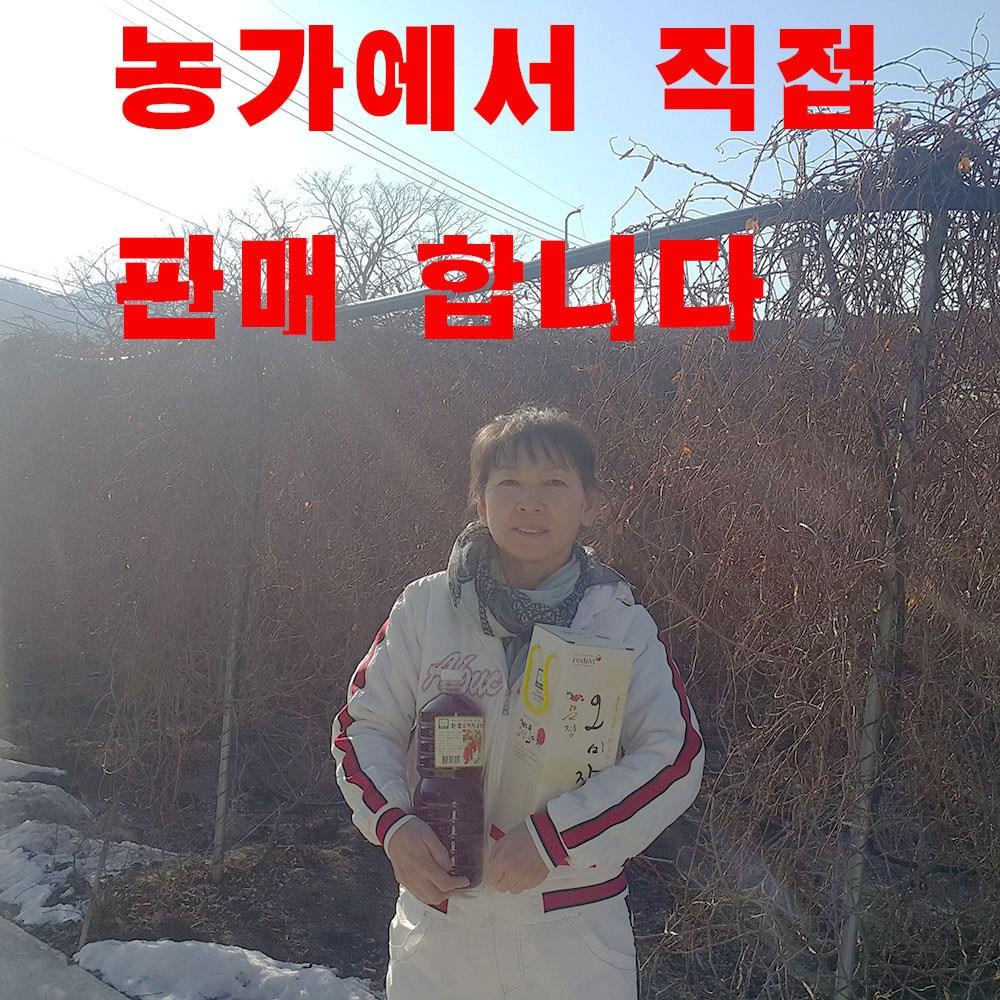 문경오미자 유정농원 오미자청 원액, 1박스, 1000ml