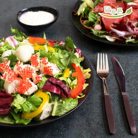 [담푸른]더가뿐 토핑 샐러드 4주 식단 (총16팩), 1세트, 닭가슴살 샐러드-165g/자몽베리 샐러드-165g/크래미 샐러드-175g/리코타 치즈-160g