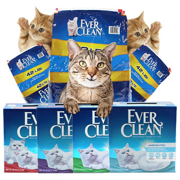 에버크린 고양이 모래>>벤토나이트