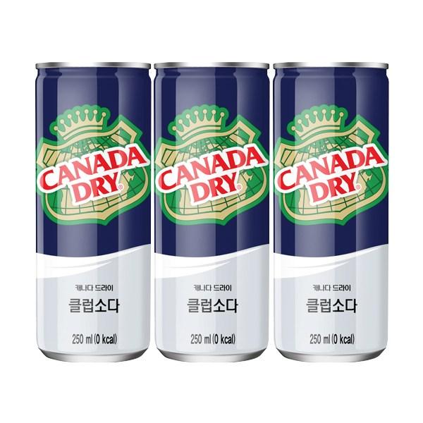 캐나다드라이 클럽소다 250ml, 60캔