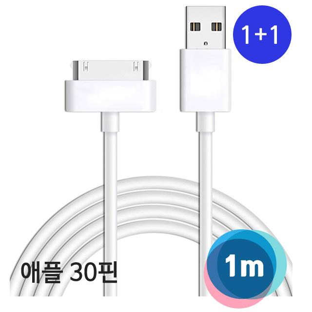 애플 1+1애플 아이패드 30핀 USB케이블 1m, 화이트, 1개