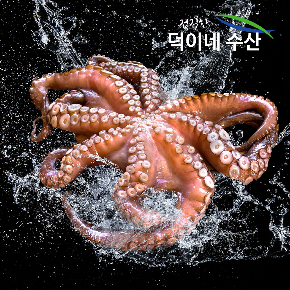 덕이네수산물 100% 국내산 남해안 싱싱 문어 500G 산지직송, 1개