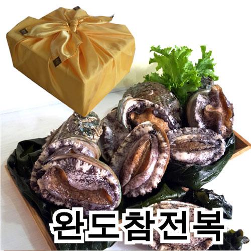 남도전복 전복, N 1kg(총9~10마리), 1box