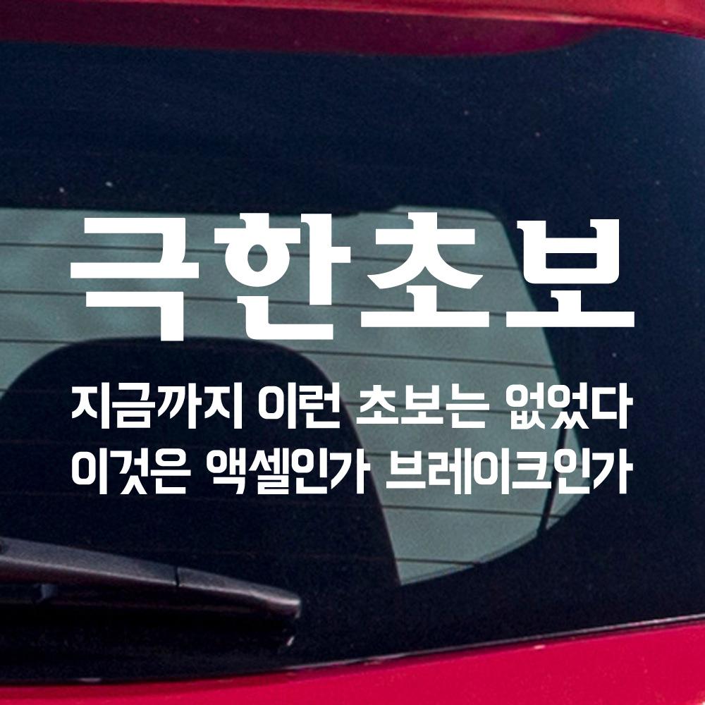 모노먼트 초보운전 스티커 - 극한초보, M_흰색
