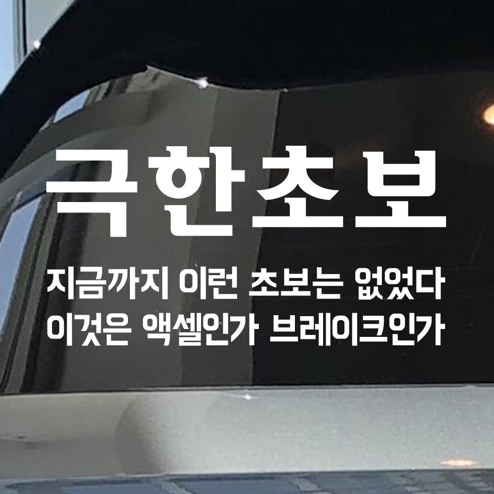 모노먼트 초보운전 스티커 - 극한초보, L_흰색(대형)